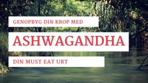 ashwangandha