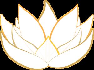 lotus-1889735_640