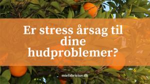 Er stress årsag til dine hudproblemer- (1)
